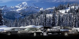 Denver Airport to Vail Limousine